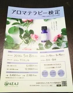 DSC_0169.JPG