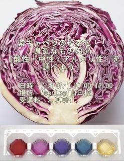 kyabetsu_ls1-vert.jpg
